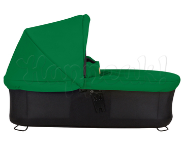 Коляска MOUNTAIN BUGGY SWIFT FERN 2 В 1